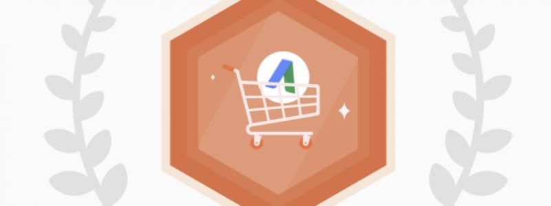 Reklama Adwords dla sklepów internetowych – Zakupy Google